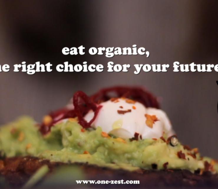 Vlog: Organic food and farming in Denmark!