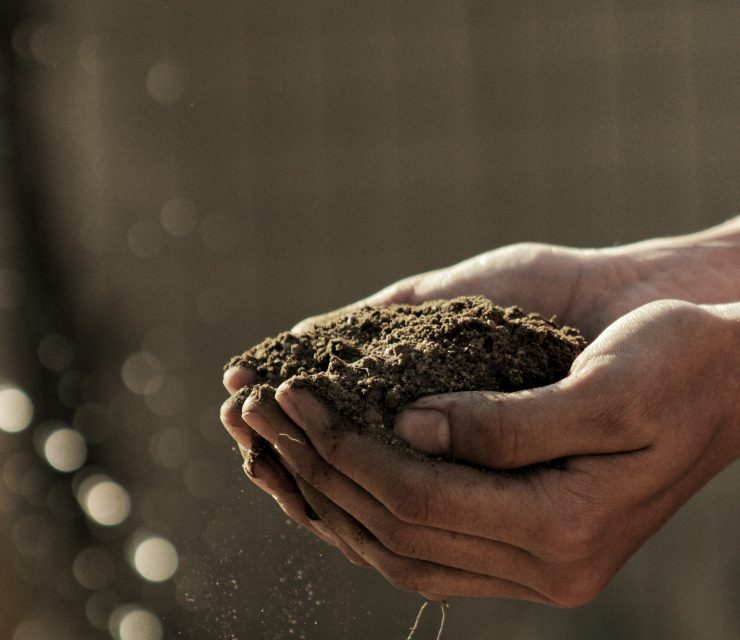 Composting, the key to life